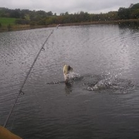 Leaping Pike Bennet Hogg on the other end!!