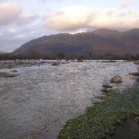 This was a field yesterday. The view downstream