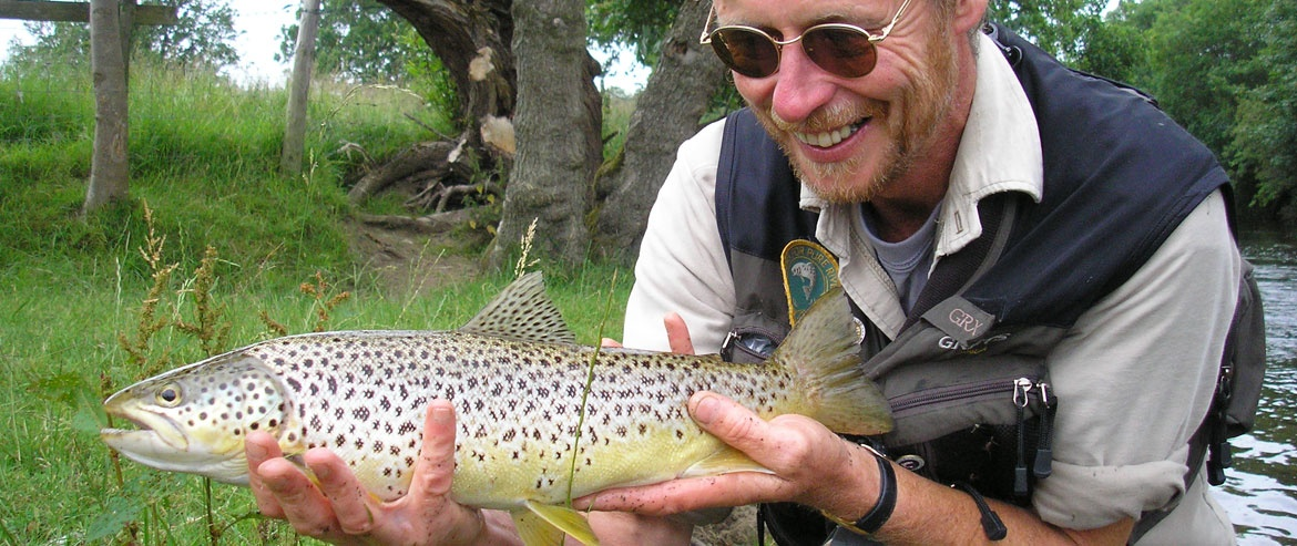 Nice Derwent wild brown trout